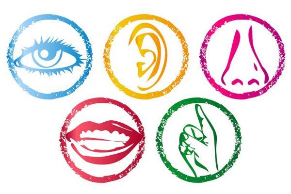 Polisensoryka w nauce języków obcych
